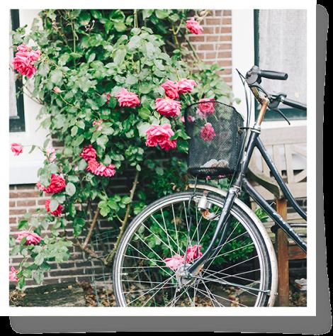 Bienvenue à Amsterdam